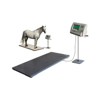 Veterinary floor Stationary & weighing fish portable Horse Livestock Scale animal scales for pig